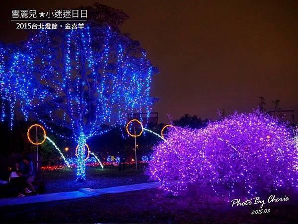 20150301台北燈節006