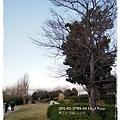 DSCN36901.jpg