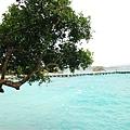 20090806_菲律賓長灘島5日 093.jpg