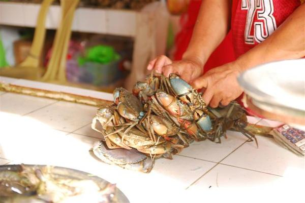 20090806_菲律賓長灘島5日 495.jpg