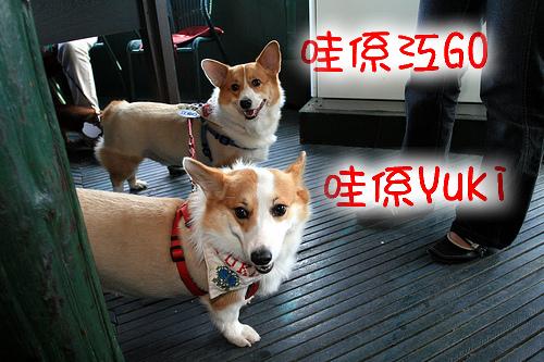 6-2.江go與Yuki.jpg