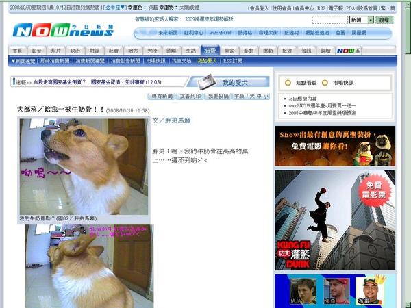 2008-10-30 榮登今日新聞-我的愛犬.JPG