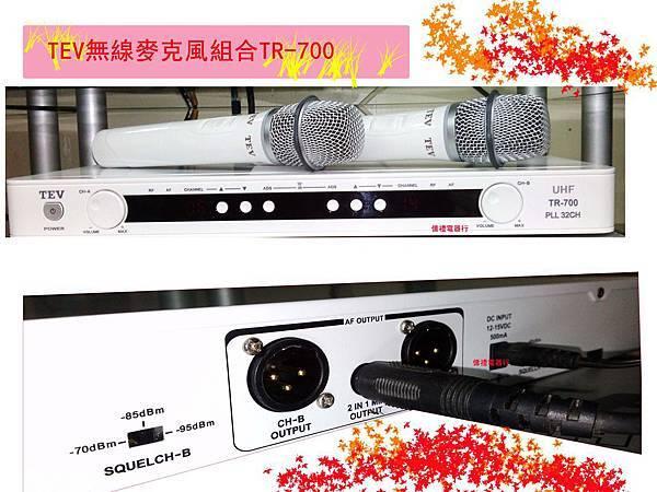 TEV MIC TR-700組合