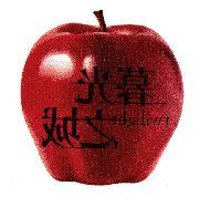 蘋果轉印貼