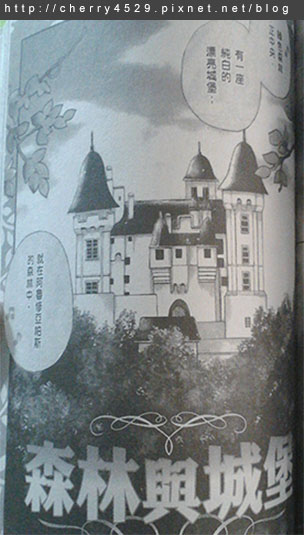 森林與城堡