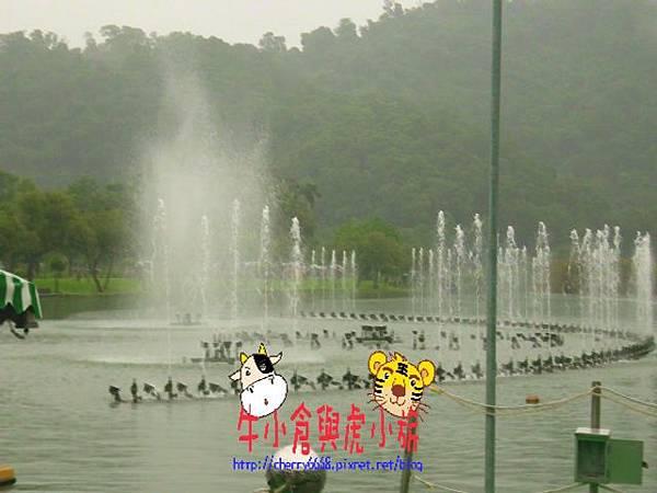 梅花湖 (16).JPG