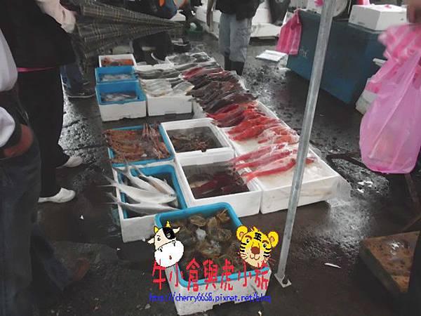 大溪漁港.JPG