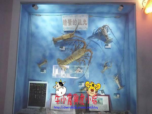 北關農場-標本區 (113).JPG