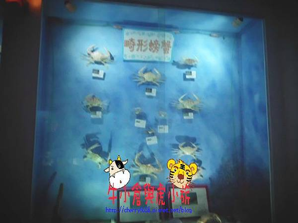 北關農場-標本區 (116).JPG