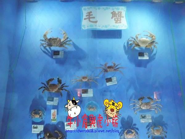 北關農場-標本區 (124).JPG