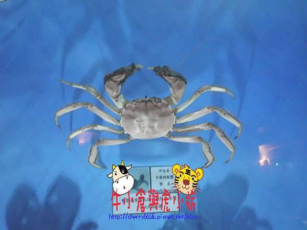 北關農場-標本區 (125).JPG
