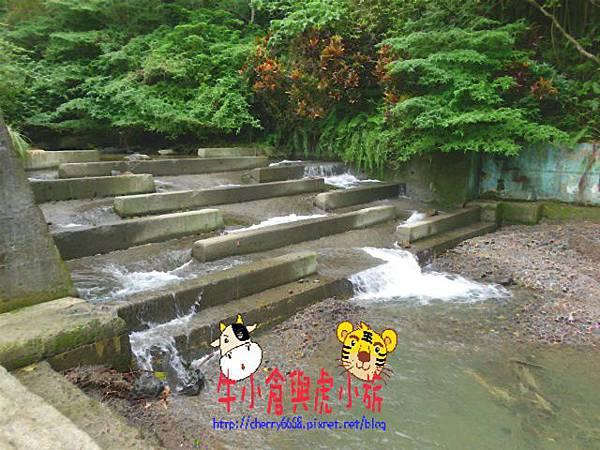 北關農場-環境 (11).JPG