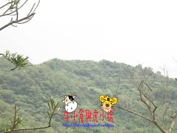 北關農場-環境 (15).JPG