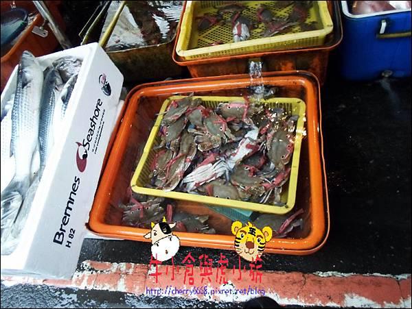 龜吼漁港 (8)