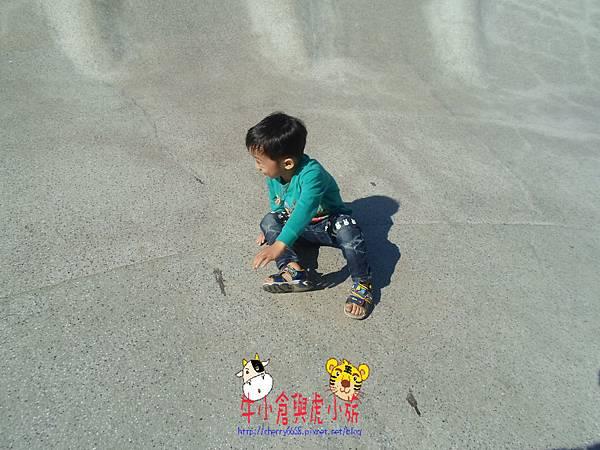 SAM_0719.JPG