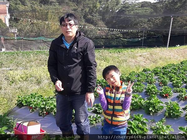 1224草莓園_161225_0005.jpg