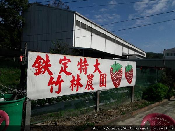 1224草莓園_161225_0022.jpg