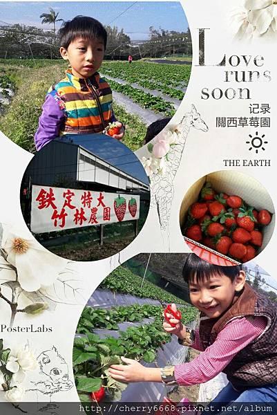 1224草莓園_161225_0024.jpg
