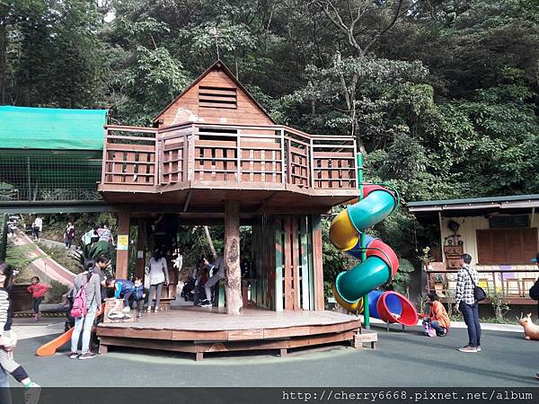 20161224森林鳥_161225_0188.jpg