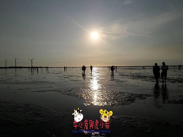 714高美濕地_170725_0046.jpg