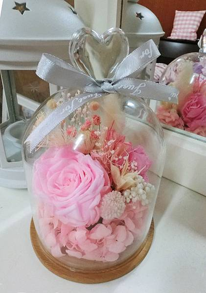 玫瑰-玻璃花罩 (1).jpg
