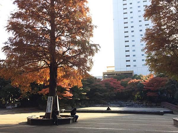 2014-11-30 085417.jpg