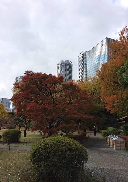 2014-11-30 103134.jpg