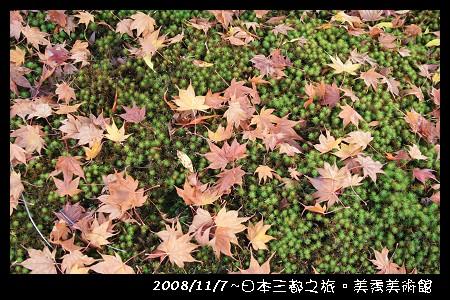 IMG_5856.jpg