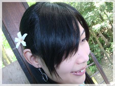 來看桐花一定要在頭上別上一朵的啦~