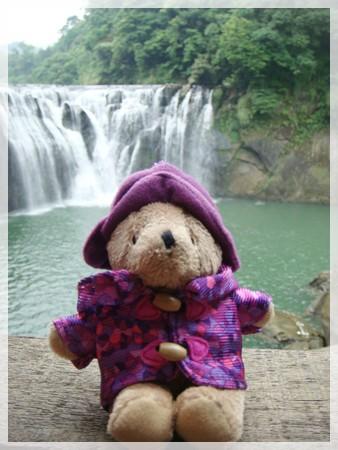 威靈頓小熊也來看了:p