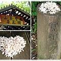 桐花步道的中間有個桐花亭,可以讓人小憩片刻