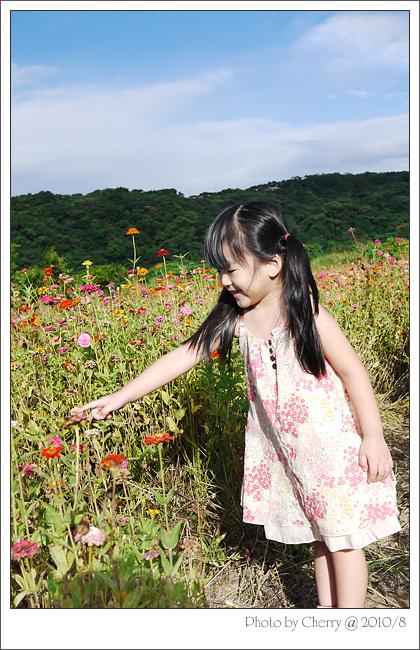 0821-花田04.jpg