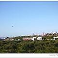 0926-風箏節06.jpg