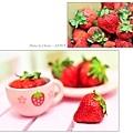 Candy送的草莓