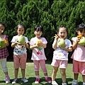 三芝摘柚趣-4.jpg