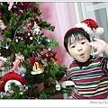 P1170699-s.jpg