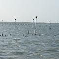 2011-11-19 142.jpg