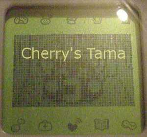 05-TamaGo-Baby-Kinotchi-CloseUp.JPG