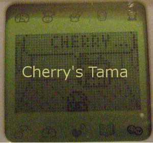 04-TamaGo-Baby-Kinotchi-Calling.JPG