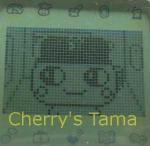 20-Mametchi-CloseUp2.JPG