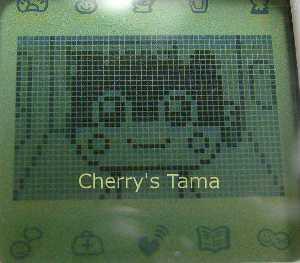 09-TamaGo-Teen-Kilalatchi-CloseUp1.JPG