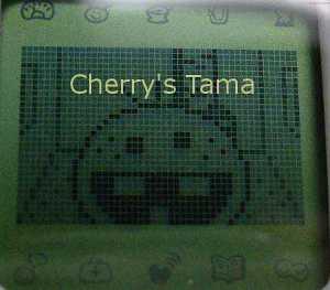 07-TamaGo-Toddler-Mattaritchi-CloseUp.JPG