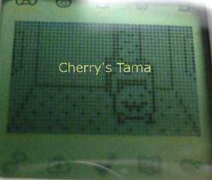 06-TamaGo-Toddler-Mattaritchi.JPG