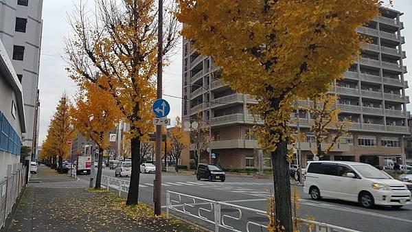 20151214_155054.jpg
