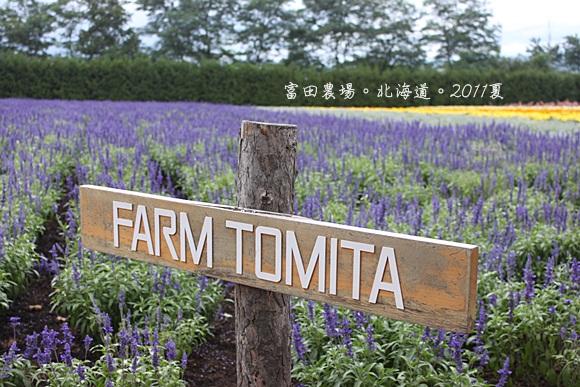 20110818富良野花園 (50).JPG