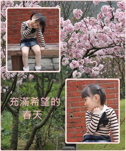 春天.jpg