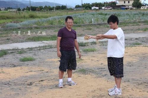 2010816三星米 (13).jpg