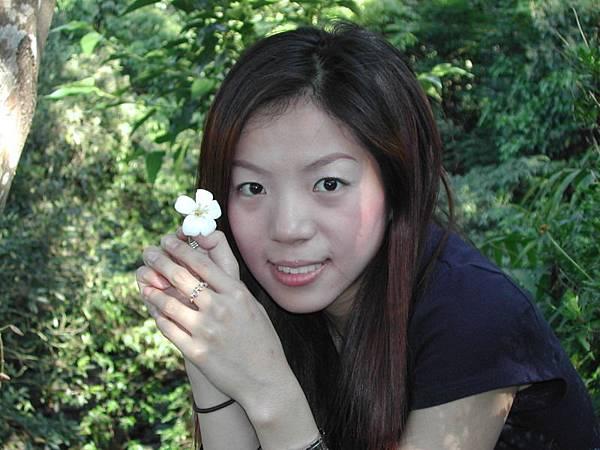 偷摘ㄉ油桐花...馬上被桃源仙谷ㄉ主人發現