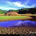 太平山翠峰湖.jpg