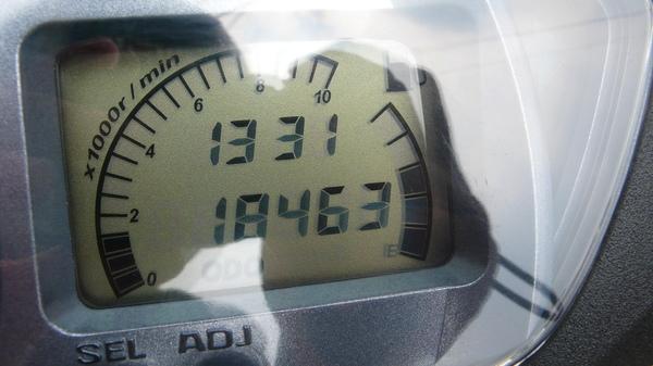 P1100284.JPG